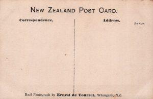 New_Zealand_C___B_and__Company_0013_b
