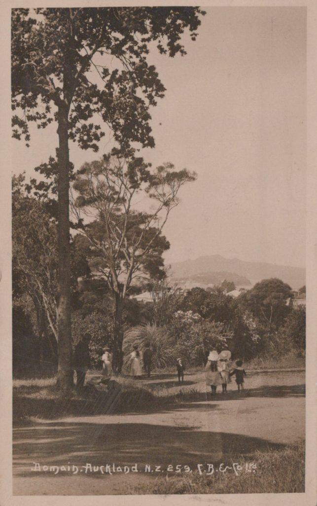 New_Zealand_postcard_views_0005