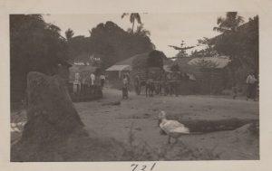 PE-BandS-Ceylon_0020