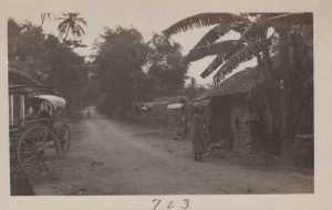 PE-BandS-Ceylon_0022
