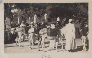 PE-BandS-Egypt_0011