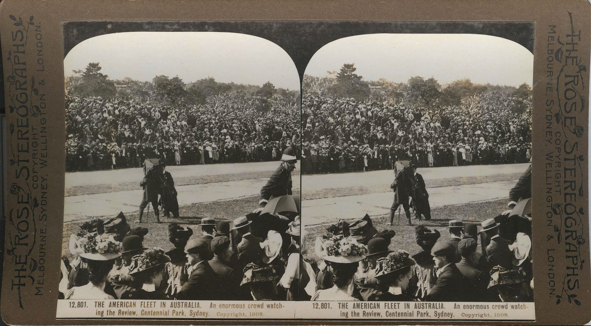 Rose Stereograph 12,801 001