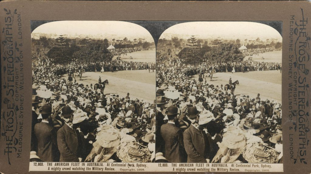 Rose Stereograph 12,803