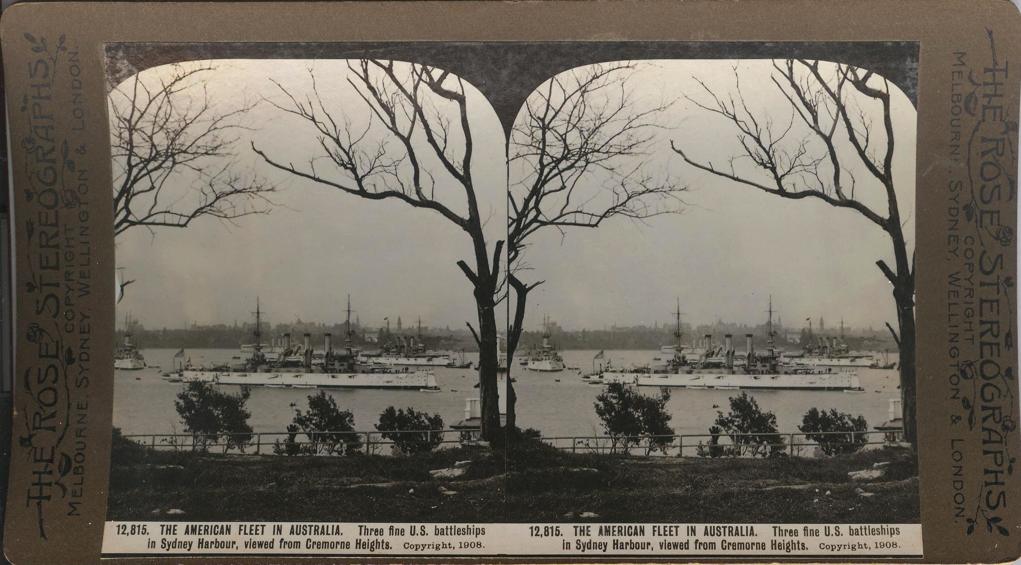 Rose Stereograph 12,815 001
