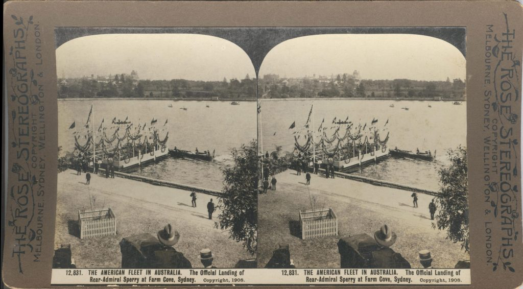 Rose Stereograph 12,831