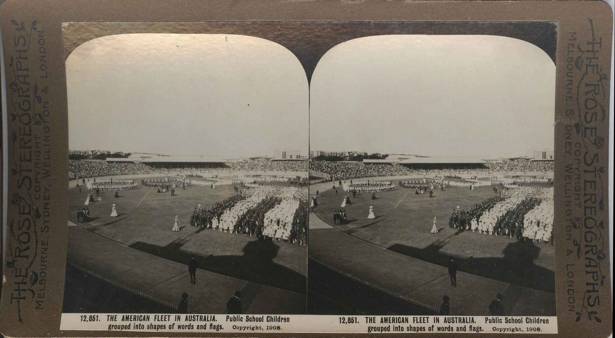 Rose Stereograph 12,851 001