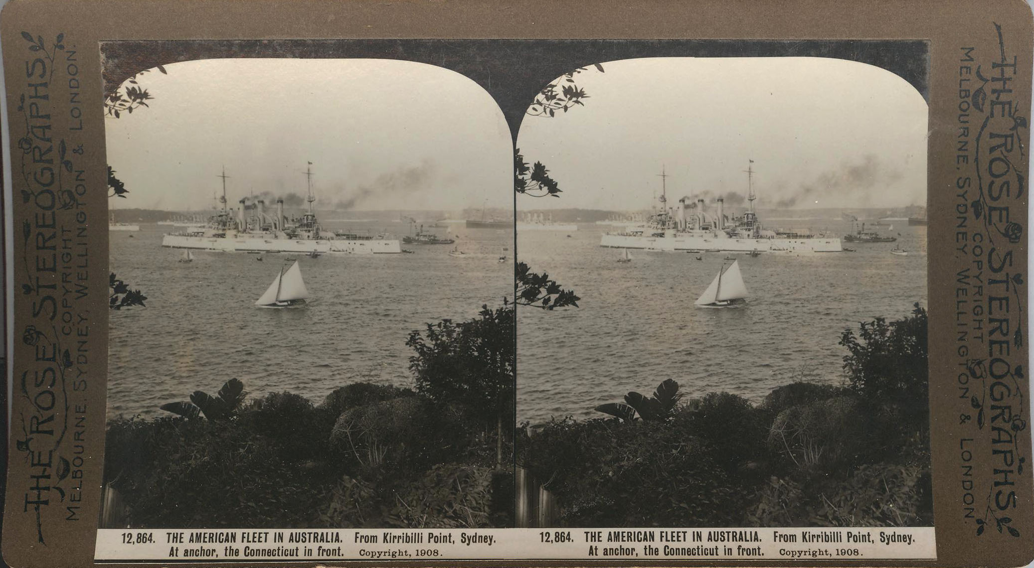 Rose Stereograph 12,864 001
