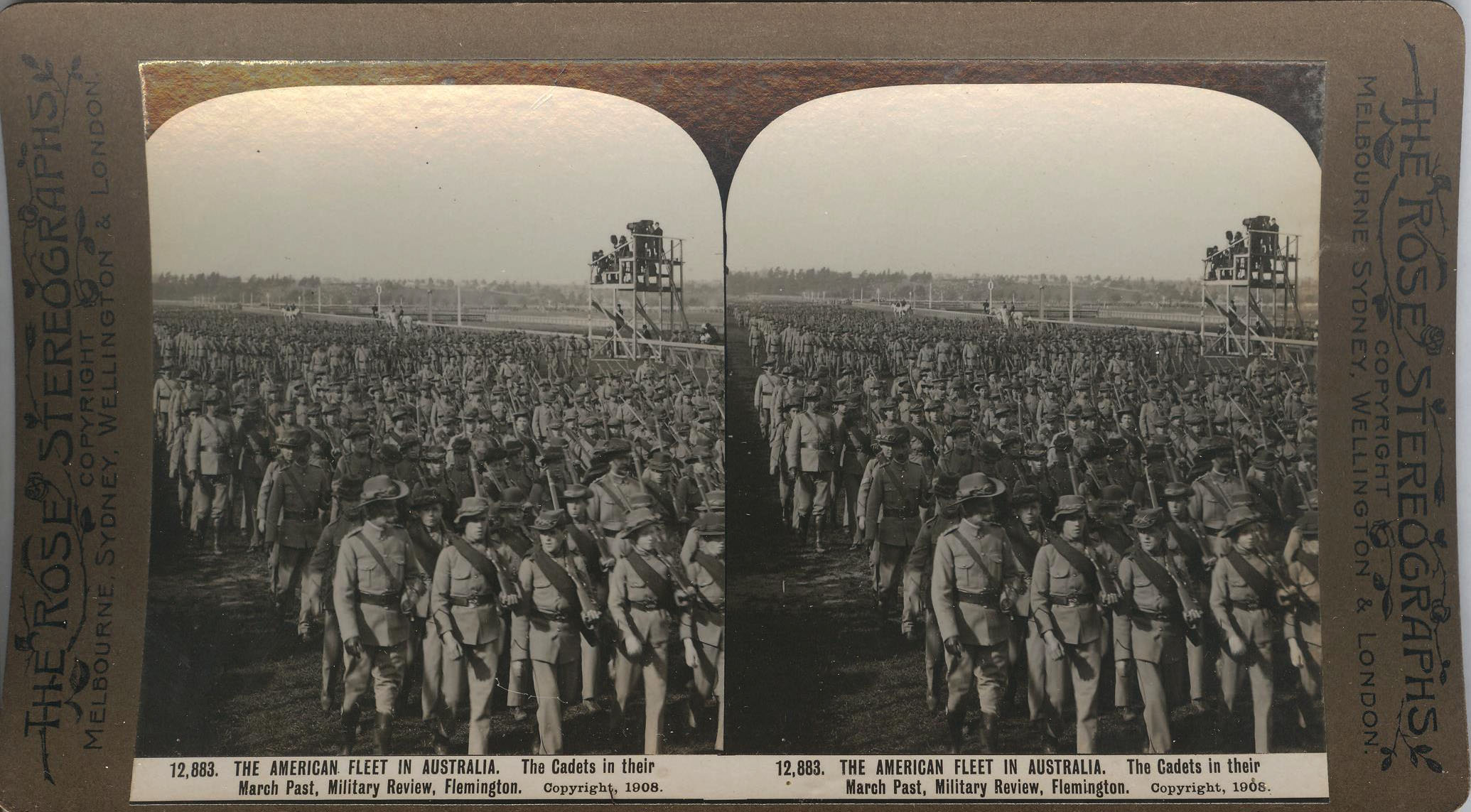 Rose Stereograph 12,883 001
