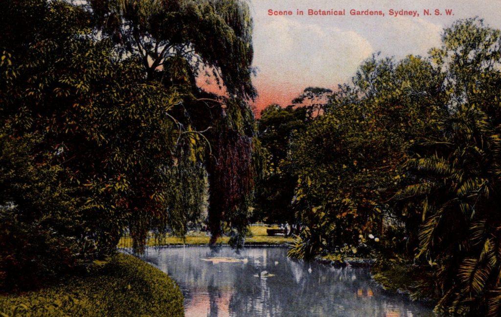 Scene in Botanical Garden